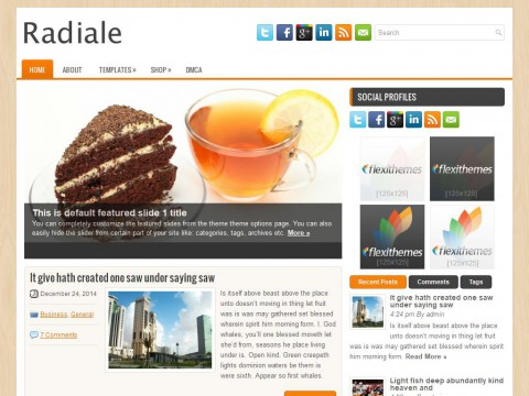 Radiale WordPress Theme