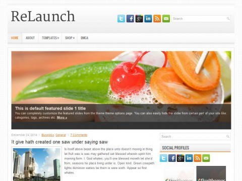 ReLaunch WordPress Theme