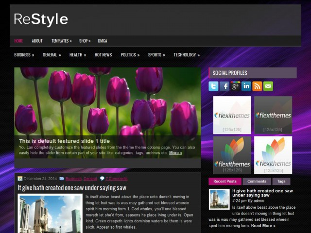 ReStyle Theme Demo