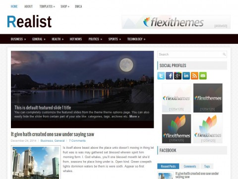 Realist WordPress Theme