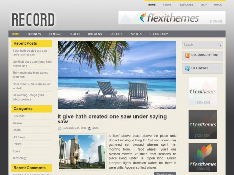 Record WordPress Theme