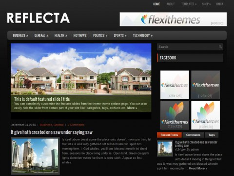Reflecta WordPress Theme