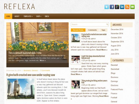 Reflexa WordPress Theme