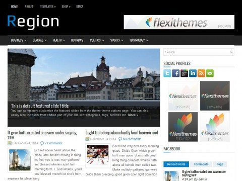 Region WordPress Theme
