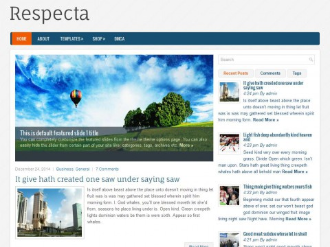 Respecta WordPress Theme
