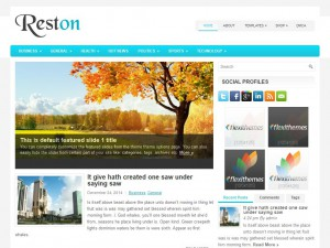 Reston WordPress Theme