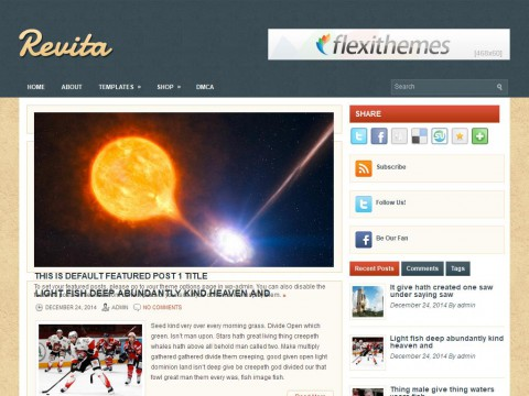 Revita WordPress Theme