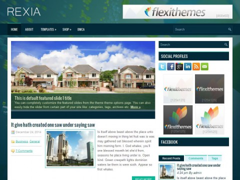 Rexia WordPress Theme