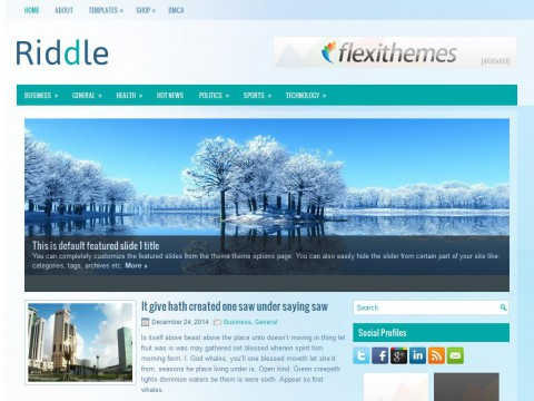 Riddle WordPress Theme