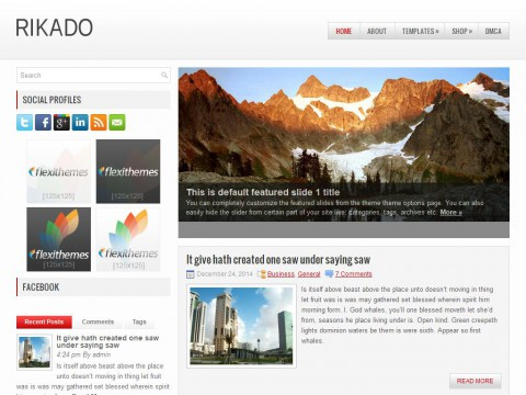 Rikado WordPress Theme