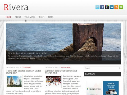 Rivera WordPress Theme