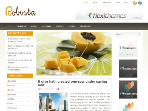 Robusta WordPress Theme