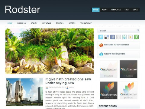Rodster WordPress Theme