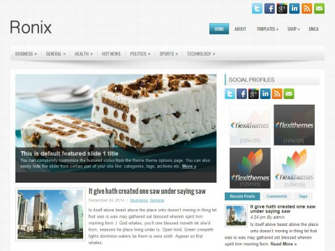Ronix WordPress Theme