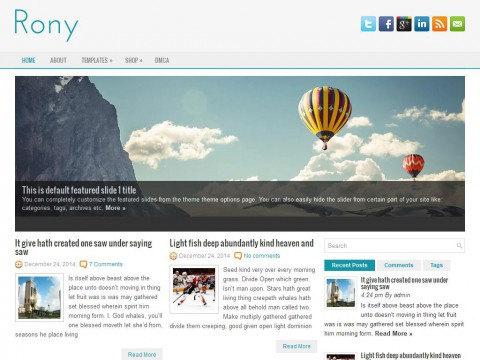 Rony WordPress Theme