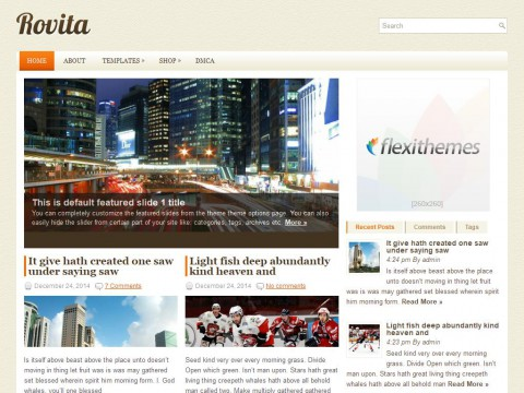 Rovita WordPress Theme