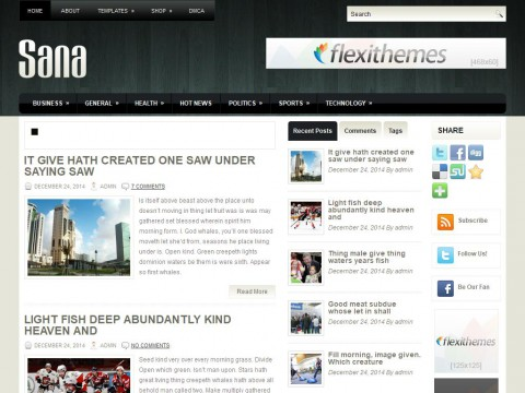 Sana WordPress Theme
