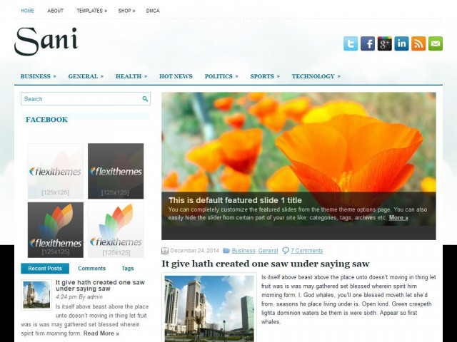Sani Theme Demo