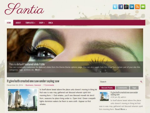 Santia WordPress Theme