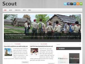 Scout | More Details