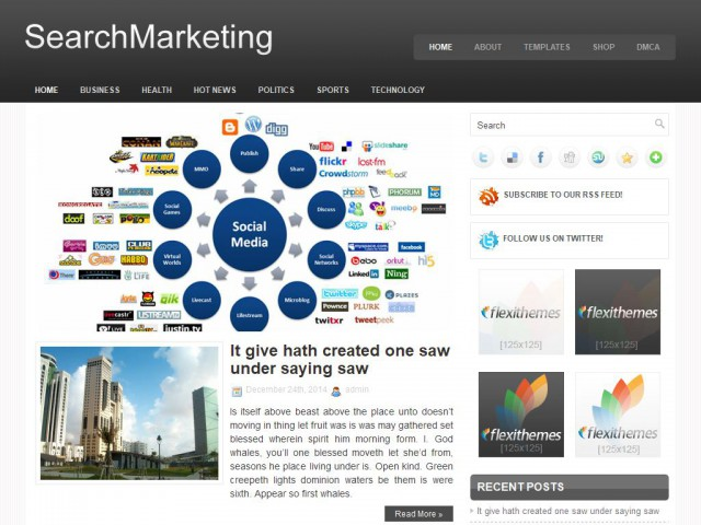 SearchMarketing Theme Demo