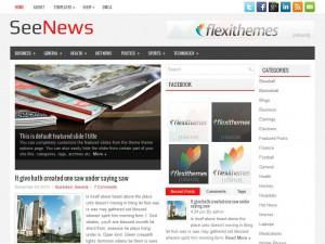 SeeNews | More Details