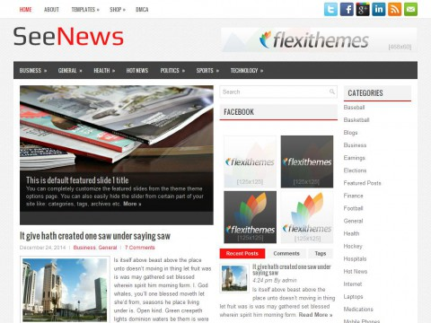 SeeNews WordPress Theme
