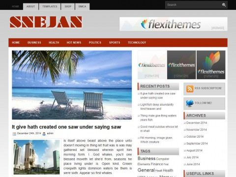 Sejan WordPress Theme