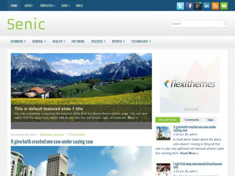 Senic WordPress Theme
