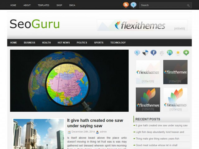SeoGuru Theme Demo