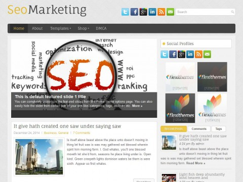 SeoMarketing WordPress Theme