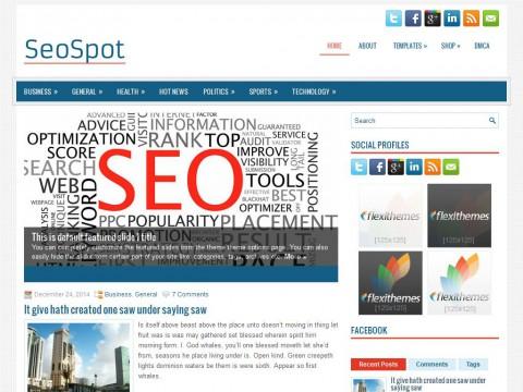 SeoSpot WordPress Theme