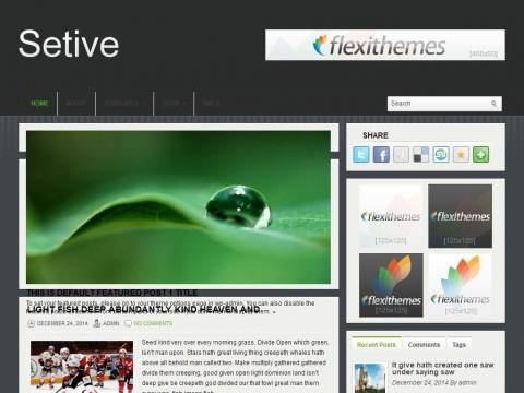 Setive WordPress Theme