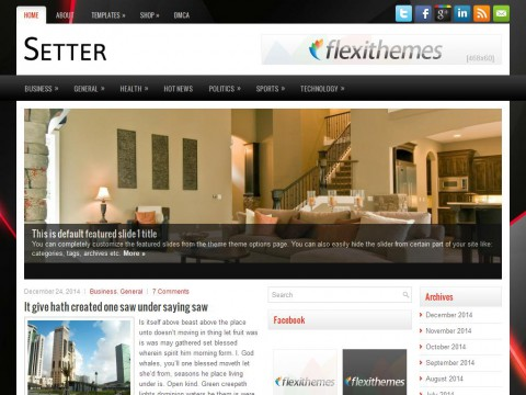Setter WordPress Theme