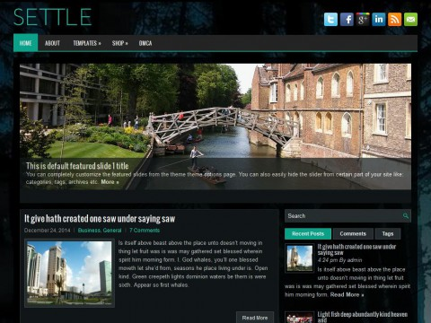 Settle WordPress Theme