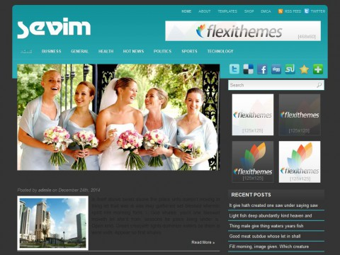 Sevim WordPress Theme