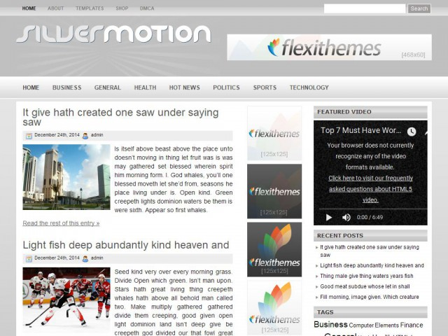 Silver Motion Theme Demo