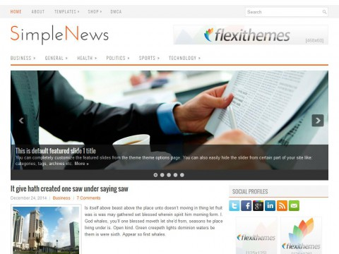 SimpleNews WordPress Theme