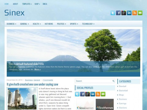 Sinex WordPress Theme