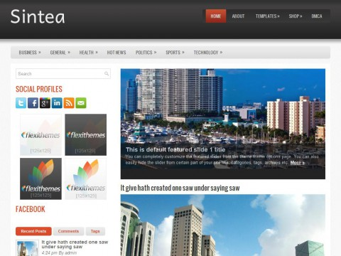 Sintea WordPress Theme