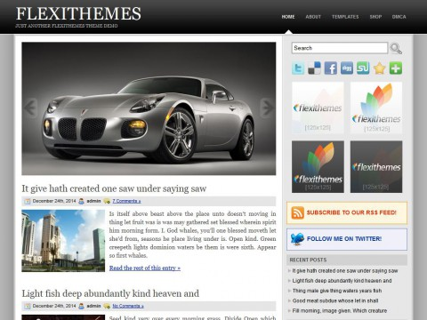 Slidely WordPress Theme