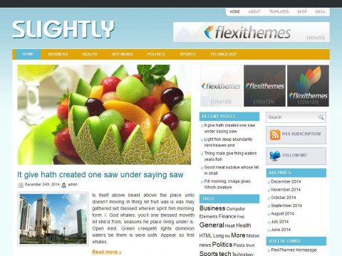 Slightly WordPress Theme