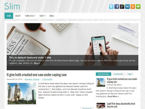 Slim WordPress Theme