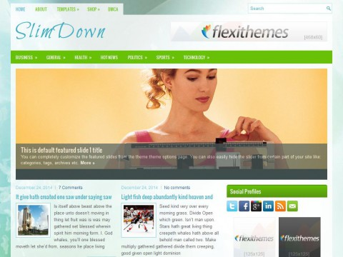 SlimDown WordPress Theme