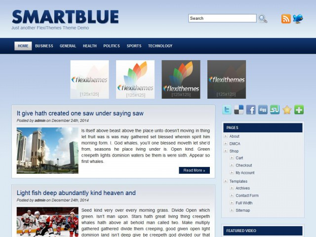 Smart Blue Theme Demo