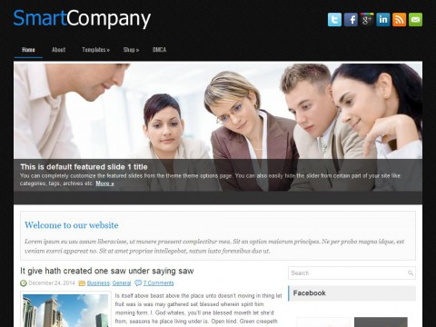 SmartCompany WordPress Theme