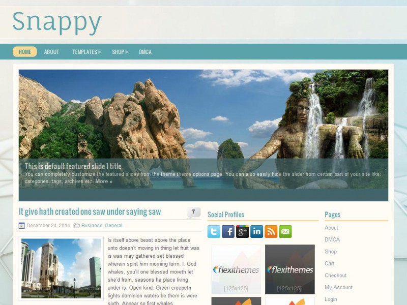 Snappy - General/Blog WordPress Theme For 2019