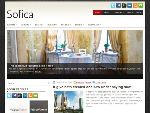 Sofica WordPress Theme