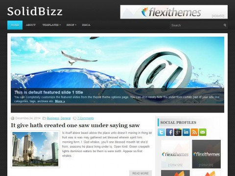 SolidBizz WordPress Theme