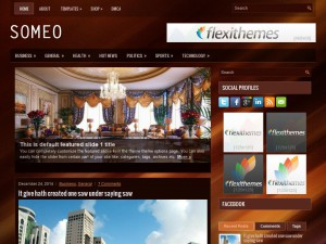 Someo WordPress Theme